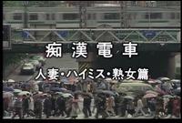 SCB-20 痴●電車 人妻・ハイミス・熟女篇